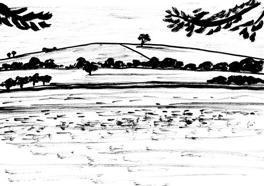 Landscape web