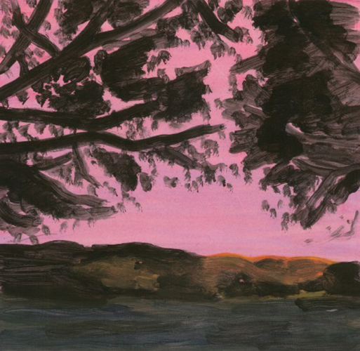 Pink Sky web