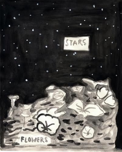 Stars-&-Flowers